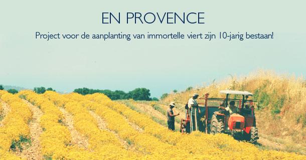 Immortelle - L'Occitane en Provence