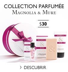 Kit de descubrimiento Magnolia & Mora