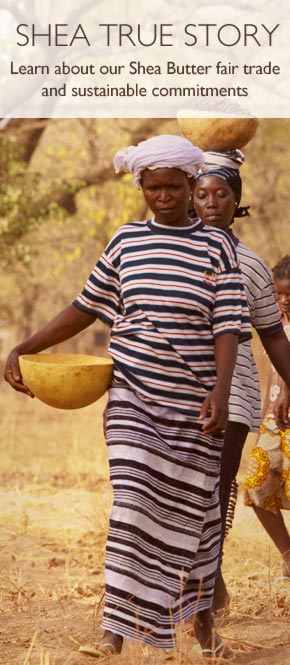 Shea True Story - learn about our shea butter fair trade sustainable commitments