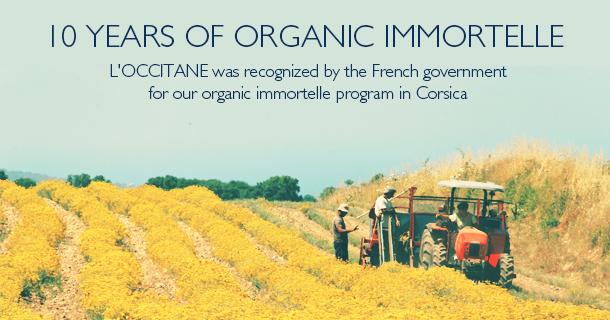10 Year of Organic Immortelle