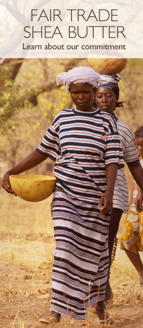 Fair Trade Shea Butter in Burkina Faso