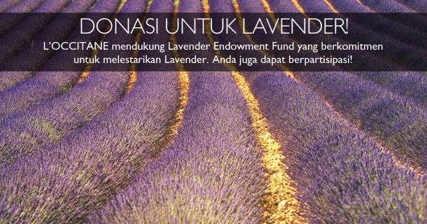 L'OCCITANE mendukung Lavender Endowment Fund yang berkomitmen untuk melestarikan Lavender. Anda juga dapat berpartisipasi.