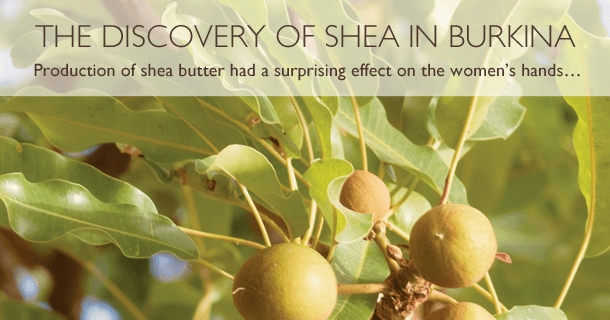 the Discovery of Shea in Burkina