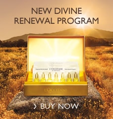 New Divine Renewal Program