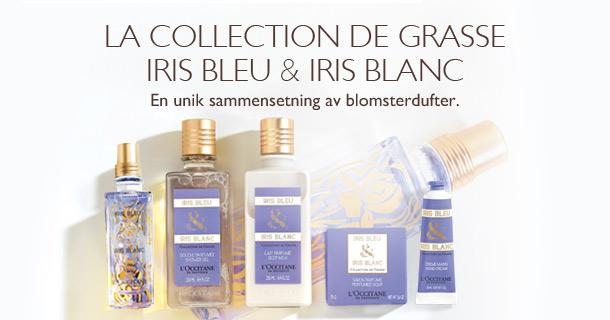 Iris Bleu & Iris Blanc
