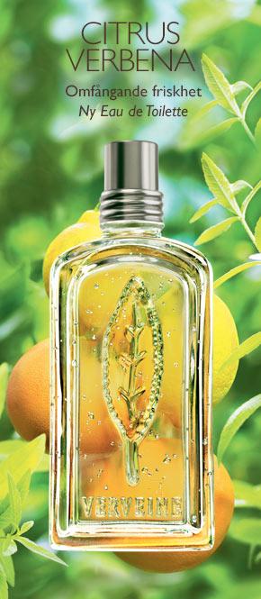 Citrus Verbena