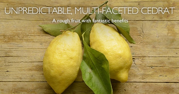 A rough fruit with fantastic benefits