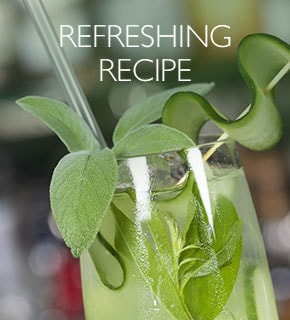Refreshing Recipe