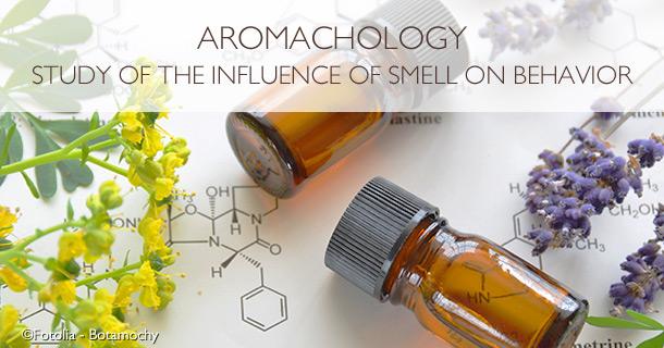 Aromachology Study