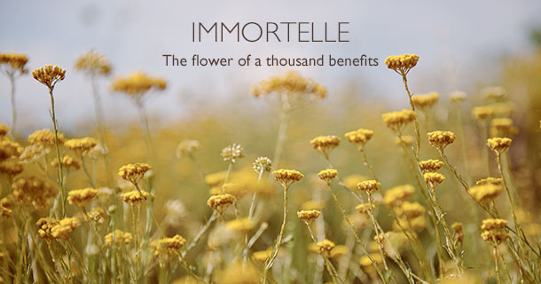 The flower of a thousand benefits