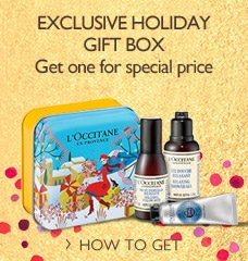 Exclusive holiday gift box