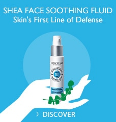 Shea Face Soothing Fluid