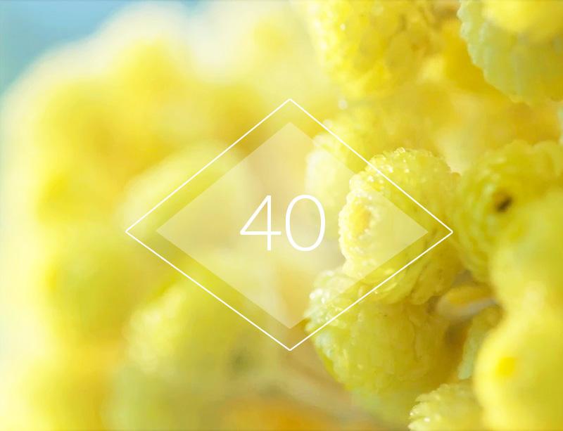A los 40, ayuda a reafirmar tu piel