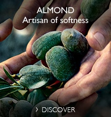 Artisan of softness