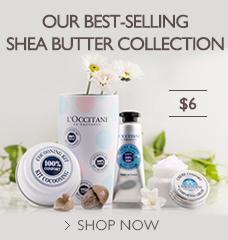 Shea Starter Kit