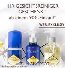 Reinigungs-Angebot