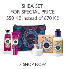 Shea Set for Special Price