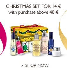 Christmas Set for 14 €