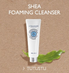 Shea foaming cleanser