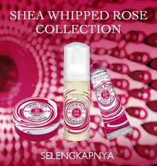 Shea Whipped New Collection