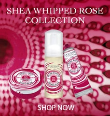 Shea Whipped Collection