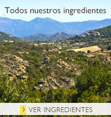 Lista de ingredientes de los productos L'OCCITANE