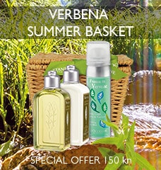 VERBENA SUMMER BASKET DISCOVERY SET