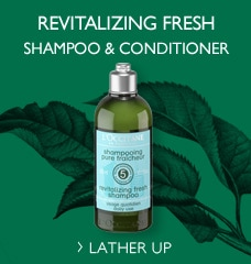 Aromachologie Refreshing Shampoo and Conditioner