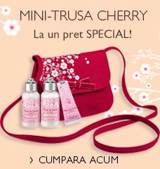 Mini-Poseta Cherry>