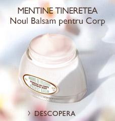 NOUL BALSAM PENTRU CORP >