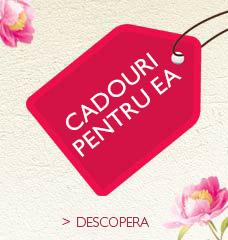 PENTRU EA >