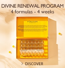 DIVINE RENEWAL PROGRAM >