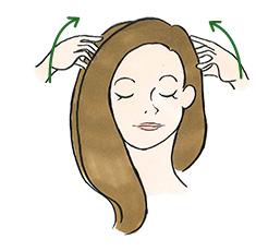こめかみから頭頂部に向かって、指の腹を使い軽く頭皮をマッサージ