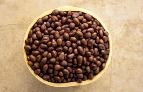 乳油木:卓越保濕成分