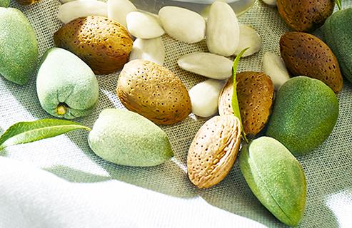 Wie man mit natürlichen Pflegeprodukten Cellulite los wird