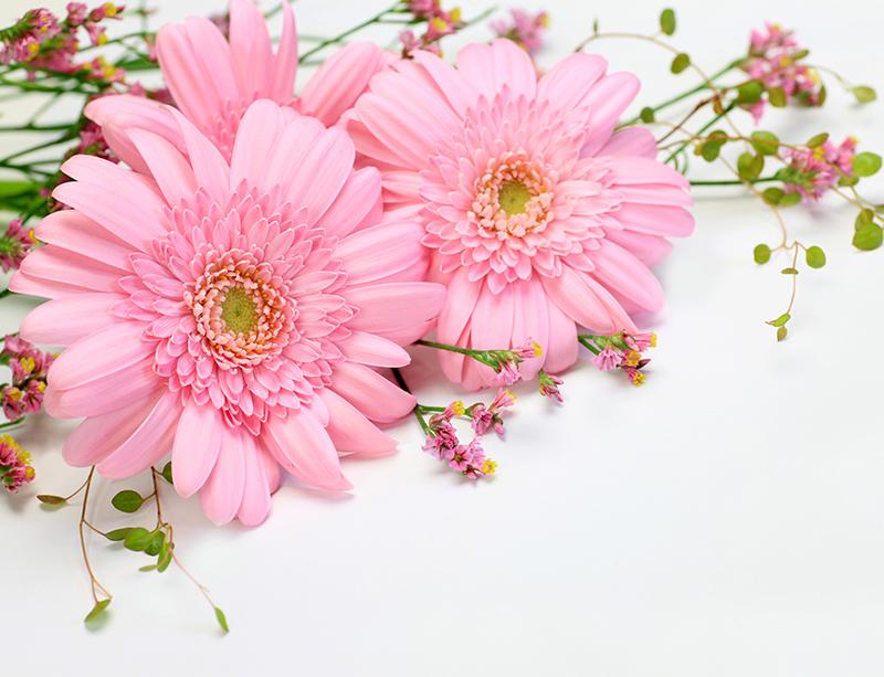 秋の花を添えてひときわ華やかに