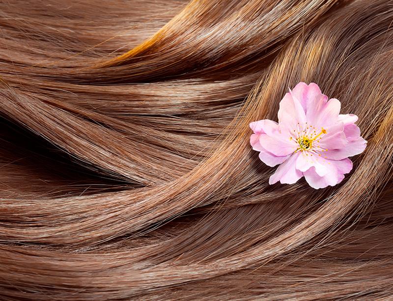 乾燥を防いでサラツヤ髪をキープして