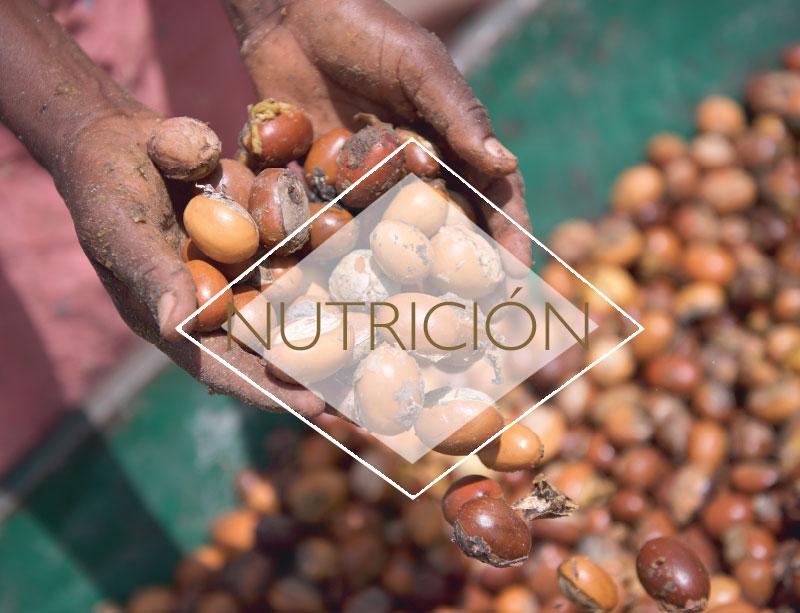 Hidratación y nutrición para tu piel