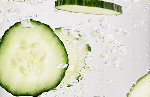 THE HIDDEN POWERS OF CUCUMBER