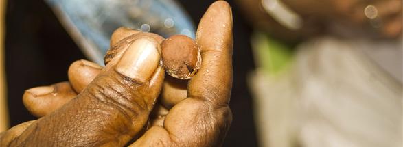 Los impactos de la asociación que existe entre L'OCCITANE  y los productores de manteca de karité son significativos en Burkina Faso