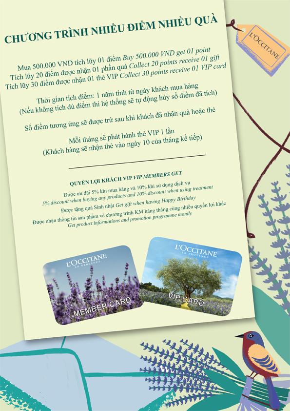 card vn