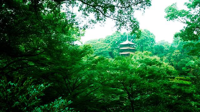 椿山荘 イメージ