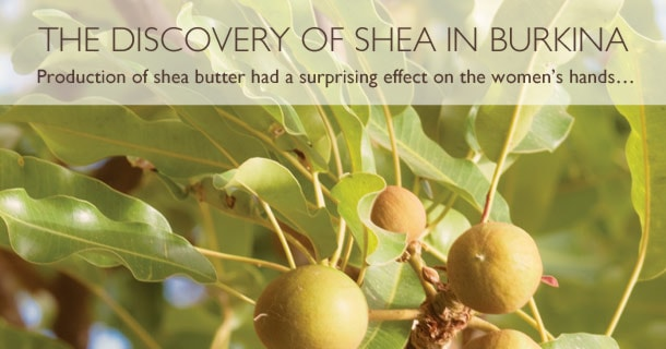 Production of shea butter had a surprising effect on the women's hands