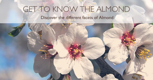 Get To Know Almond