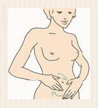 A firm stomach