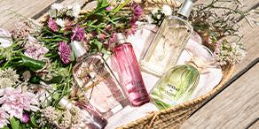 ロクシタンのフレグランス fragrance