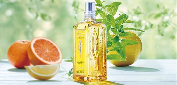 シトラスヴァーベナ citrus verbena