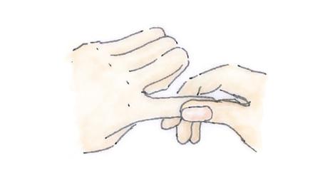 爪や爪のまわりにも、水分と油分を補給。