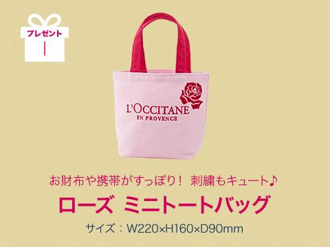 プレゼント 1 お財布や携帯がすっぽり! 刺繍もキュート♪ ローズ ミニトートバッグ サイズ:W220×H160×D90mm