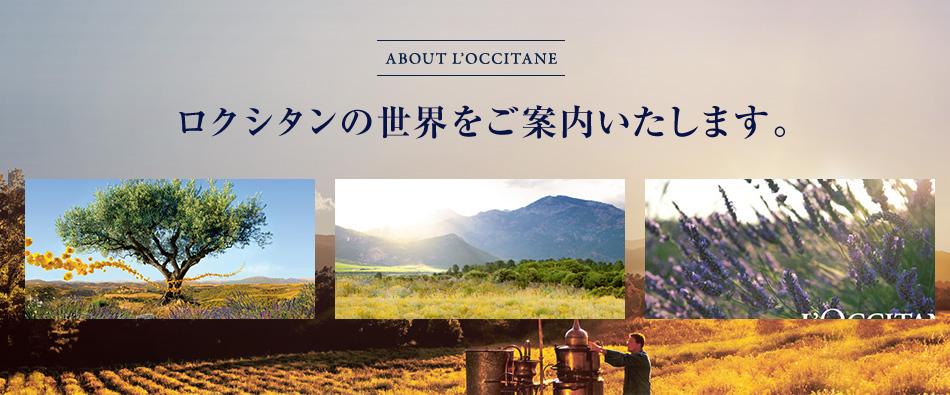 About L'occitane 真実の物語。 ロクシタンの世界をご案内いたします。